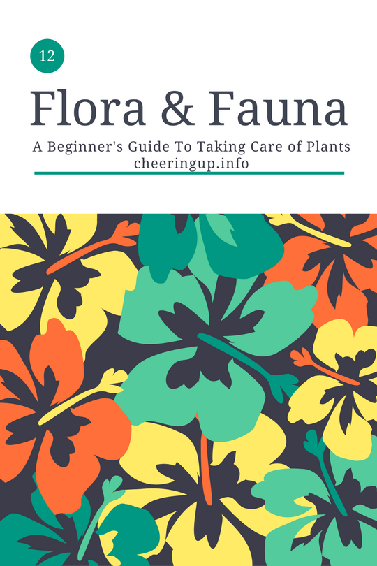 flora and fauna guide to plants and garden life