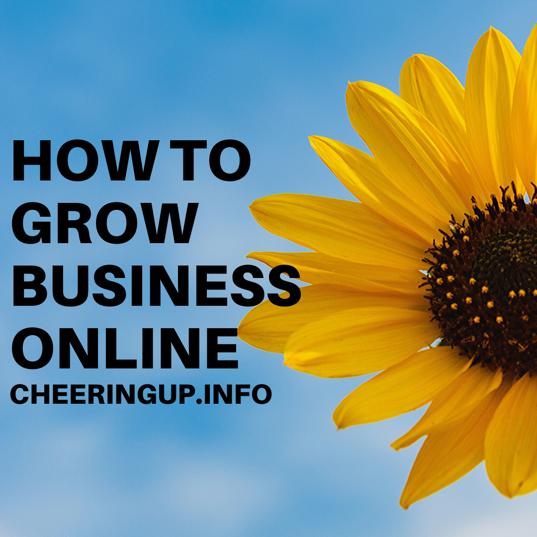 How to expand your business online
